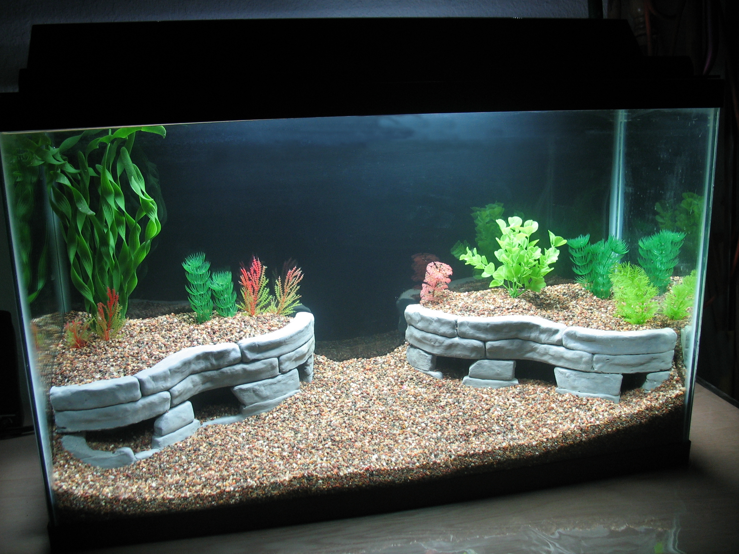 Aqua terrace landscaping idea haas forum for How to decorate fish tank